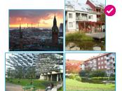 Learning from Copenhagen and Malmo