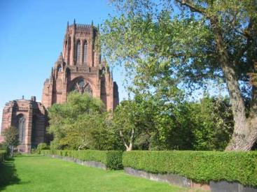 Liverpool Cathedral Gardens