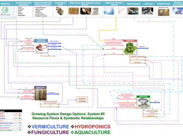 Resource Flows and symbiotic relationships